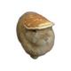 Аватар пользователя Mehr11