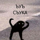 Аватар пользователя Voicer0