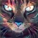Аватар пользователя frozen392