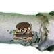 Аватар пользователя Shabashist