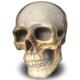 Аватар пользователя HarleyK