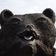 Аватар пользователя baykal904