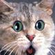 Аватар пользователя echodiv