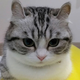 Аватар пользователя Gougu