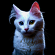 Аватар пользователя DimonZ62