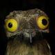 Аватар пользователя Klash
