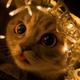 Аватар пользователя lampampidusik