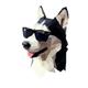 Аватар пользователя Equil
