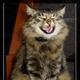 Аватар пользователя Slimy
