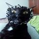 Аватар пользователя Dorena