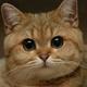 Аватар пользователя sasha003