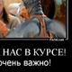 Аватар пользователя vodilkin