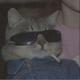 Аватар пользователя DrFrane