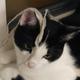 Аватар пользователя Puzo112