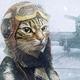 Аватар пользователя Farnfort
