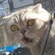 Аватар пользователя Kai125