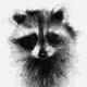 Аватар пользователя NarkDoir