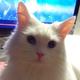Аватар пользователя Indigaron