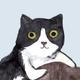 Аватар пользователя subs