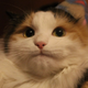 Аватар пользователя sizirk