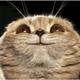 Аватар пользователя donty