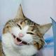 Аватар пользователя taburetka93