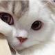 Аватар пользователя climb96