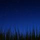 Аватар пользователя andreinexus