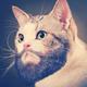 Аватар пользователя besmen