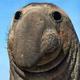 Аватар пользователя ZaTos
