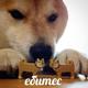 Аватар пользователя JozZzy444