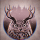 Аватар пользователя owldespair
