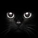 Аватар пользователя CosmicWitch