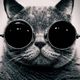 Аватар пользователя Tohimuro