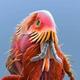 Аватар пользователя wakawaka228
