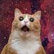 Аватар пользователя CalmDaemon