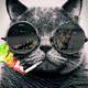 Аватар пользователя Zhas940