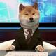 Аватар пользователя CEHEKA
