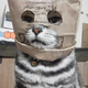 Аватар пользователя RMudrakov