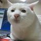 Аватар пользователя Thunderstruck333