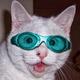 Аватар пользователя HellTimon