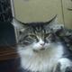 Аватар пользователя Slon9l