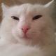 Аватар пользователя Surinova94
