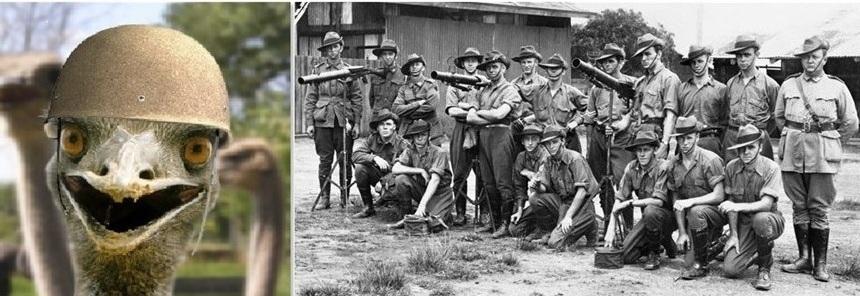 Великая война австралийцев со страусами эму рекомендации