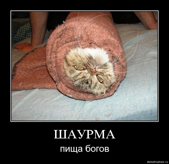 Как разделать кота