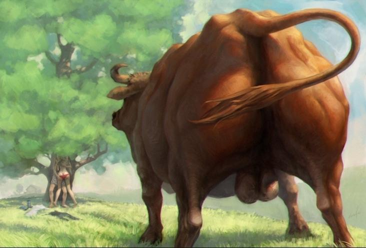Член у быков