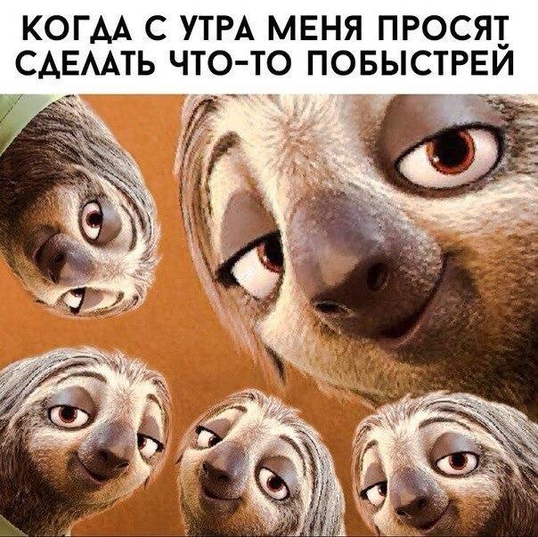 картинка почта россии мы научим вас терпению