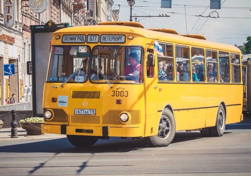 Автобус в ебать фото 315-483