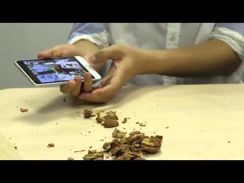 Колоть пиздой грецкие орехи