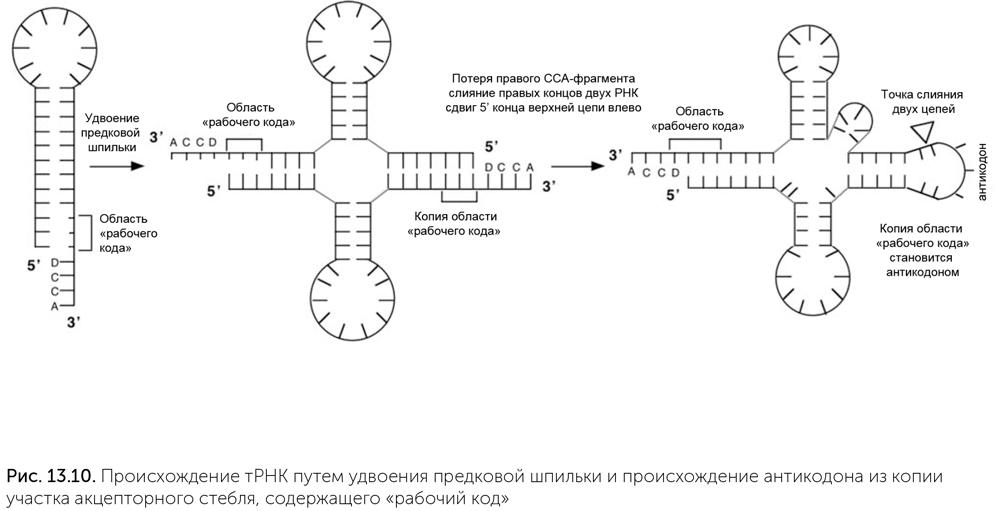 Илья пригожин порядок из хаоса скачать pdf